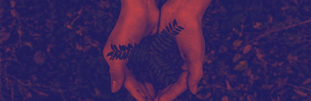 Dia mundial da conservação da natureza e sustentabilidade ambiental