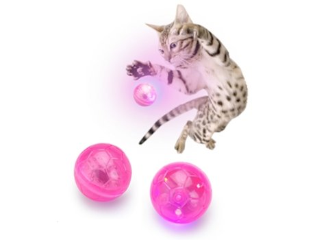 Bola Flash para Gatos D&D Adventure