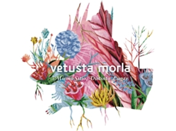 Vinil LP Vetusta Morla - Mismo Sítio, Distinto Lugar — Pop-Rock