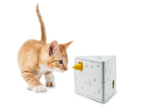 FROLICAT - Brinquedo FROLICAT Cheese Amarelo e Branco (Plástico - Para: Gatos)