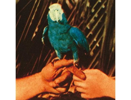 CD Andrew Bird - Are You Serious — Jazz